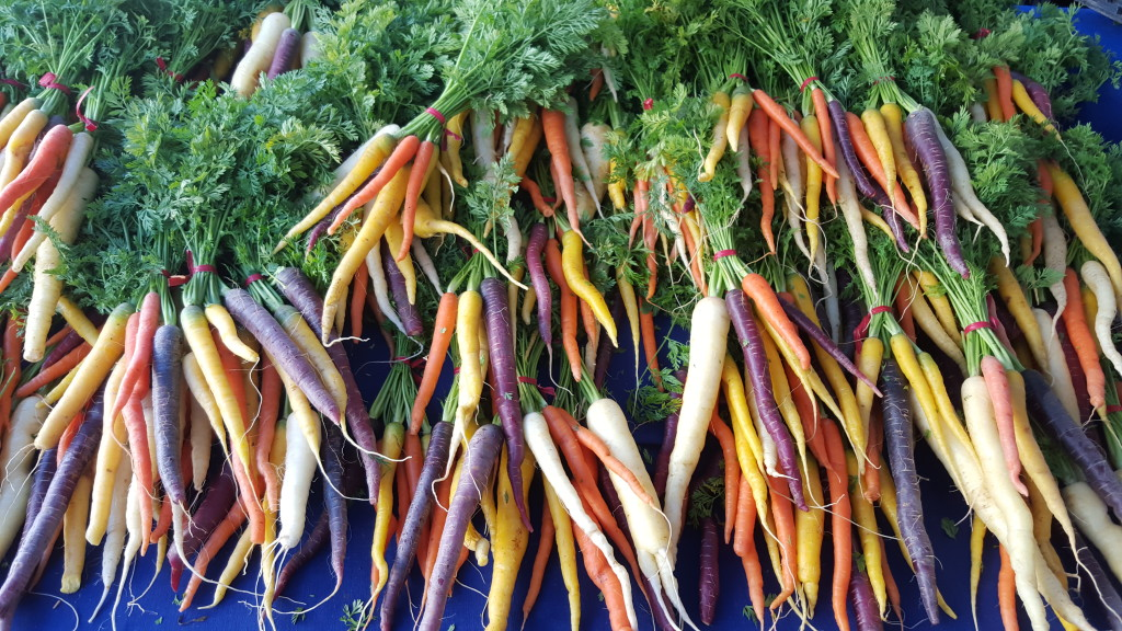Multi-colored carrots from The Garden Of... the garden of... The Garden Of... 20160124 090701
