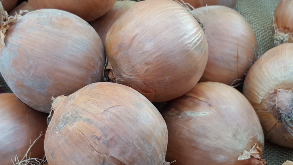 Big brown onions are regulars at the T&D Farms stand. T&D Farms T&D Farms 20160214 090553
